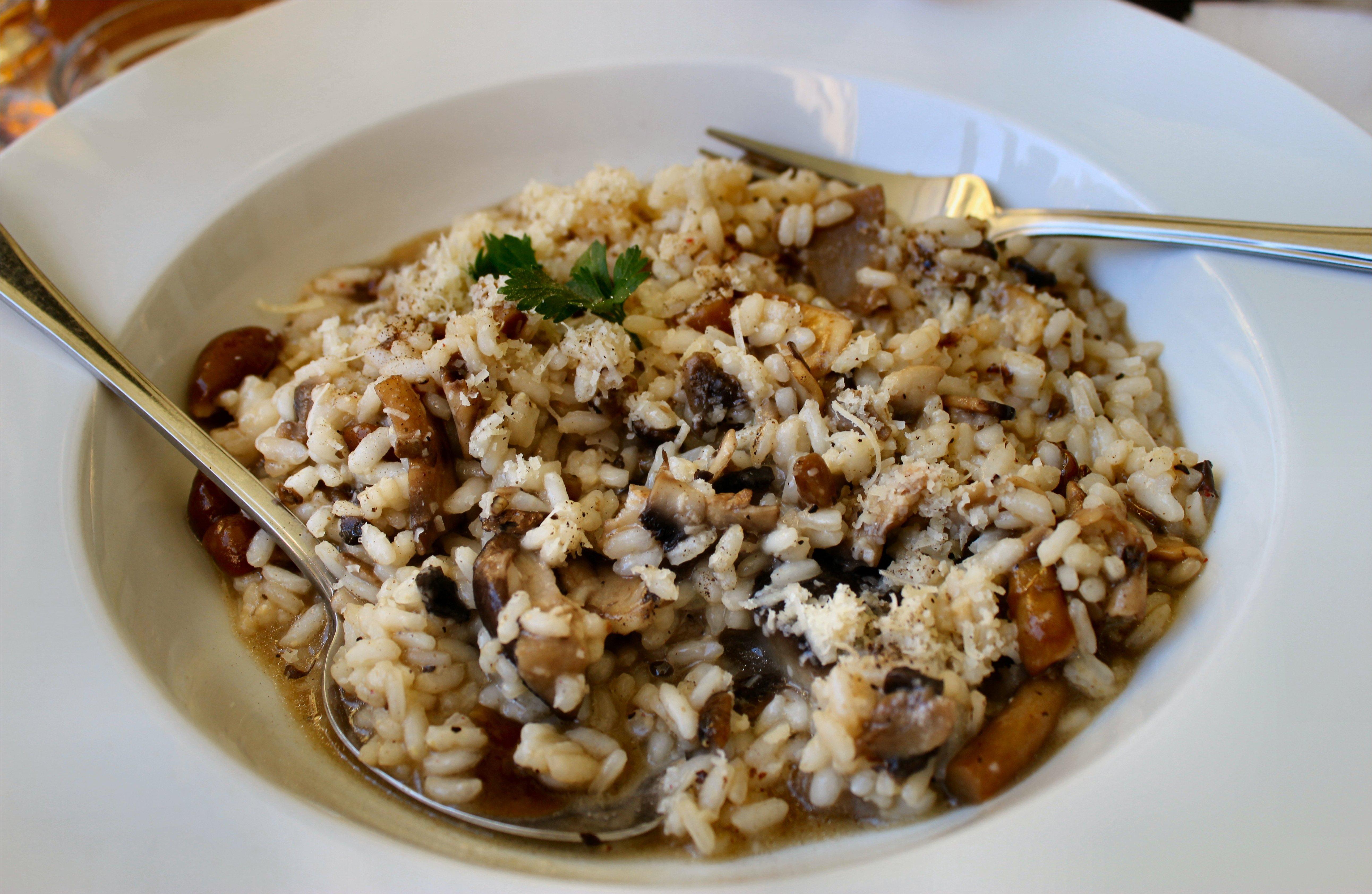 wild rice and mushroom soup wild mushroom melt panini wild mushroom ...