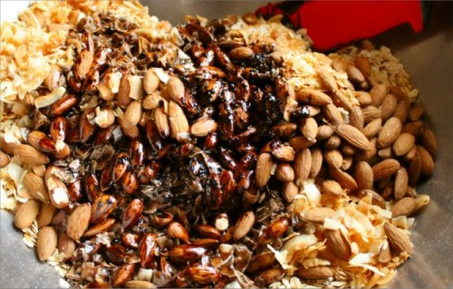 Almond Joy Granola - Freshly Baked - Inside NanaBread's Head