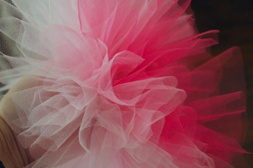 Lilly's Tutu - Ombre Detail