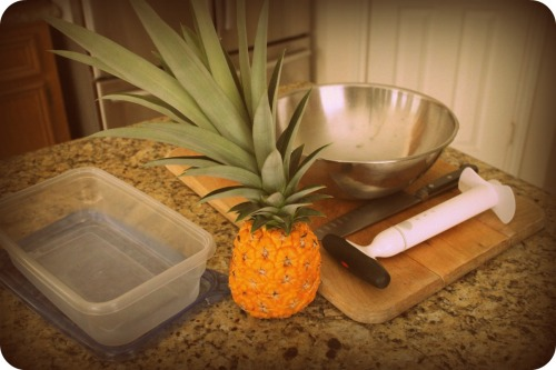 Pineapple Harvest 2013- Ready to Cut
