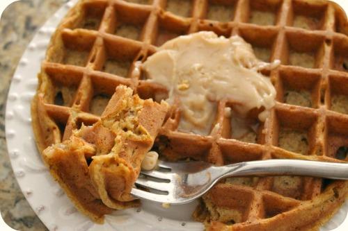 Pumpkin Hazelnut Waffles - Digging In