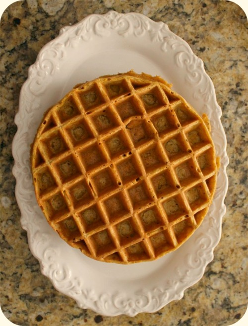 Pumpkin Hazelnut Waffles - Just Out of the Waffle Iron
