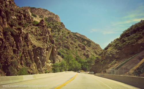 Ogden Canyon Drive