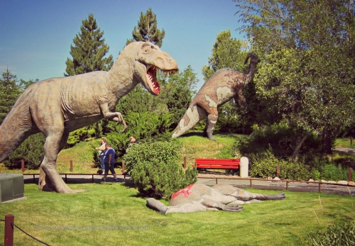 Ogden Dinosaur Park - Lunchtime