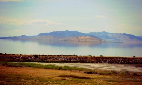 Salt Lake - lake& mtn view from Antelope Island