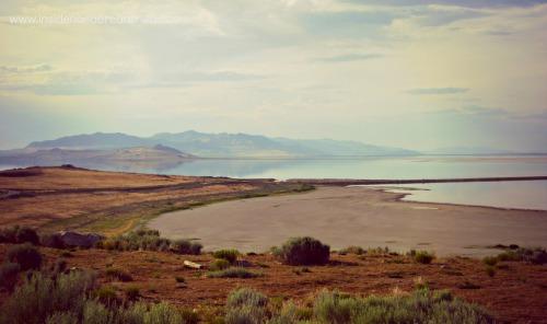 Salt Lake Park - view of causeway & lake