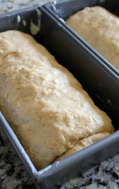 Rolled & In The Pans - PB Swirl Bread